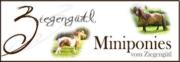Banner Ziegenguetl